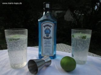 GinTonic-Camping_800x600