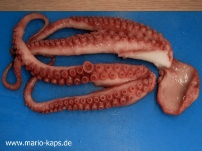 Oktopus Sous Vide - Ergebnis des Sous Vide-gegarten Oktopus