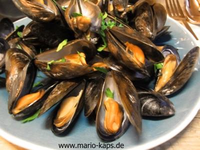 Miesmuschel-Gericht - gekochte Miesmuscheln auf einem hellblauen Teller mit Petersilie bestreut