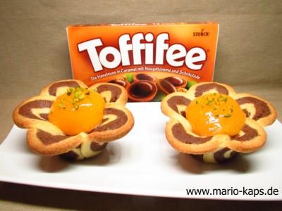 Toffifee-Aprikosen-Blüten2_10P