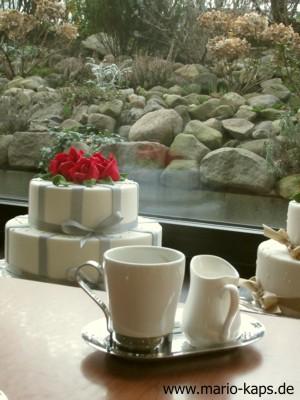Steidl-Cafe2_300x400