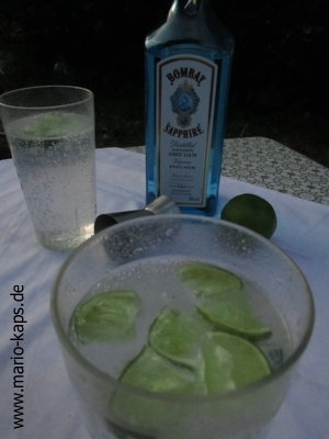 GinTonic-Camping-Detail1_300x400